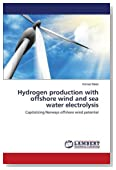 Hydrogen production with offshore wind and sea water electrolysis: Capitalizing Norways offshore wind potential