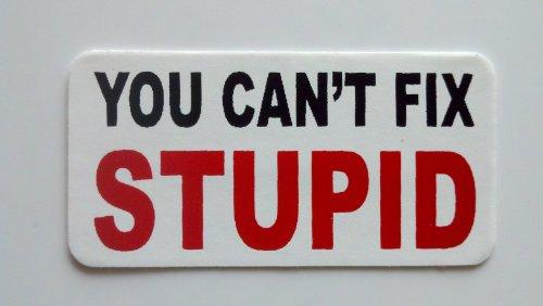 3 - You Cant Fix Stupid Hard Hat/Helmet Stickers 1 x 2