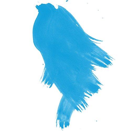 Daler-Rowney FW Acrylic Artists Ink, 1 oz, Process Cyan (160029120)