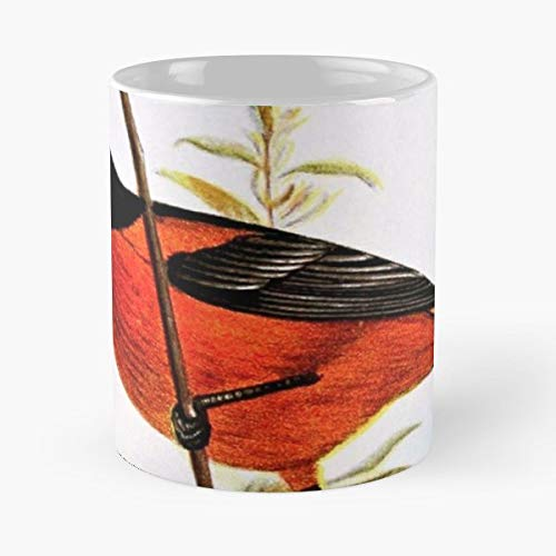 Baltimore Oriole Bird Animal - Best Gift Ceramic Coffee Mugs 11 Oz