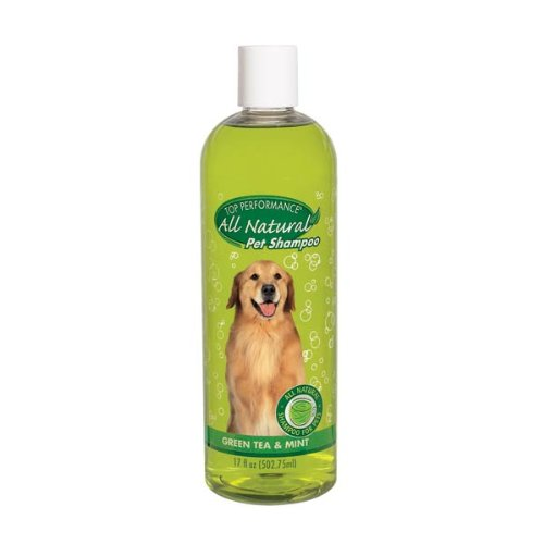 Top Performance Green Tea and Mint Puppies and Kittens Shampoo, 17-Ounce, My Pet Supplies