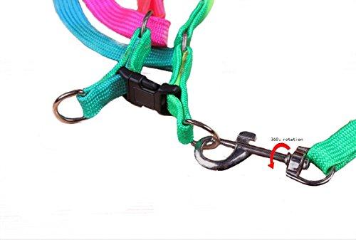 yueton-Perro-Mascota-Cachorro-Gato-Kitty-ajustable-Nylon-Correa-arco-iris-perro-pecho-correas-Cadena-Siete-Color-traccin-dorsal-torcica-Suits-perro-Cuerda-Cadena-De-Correa-De-Perro