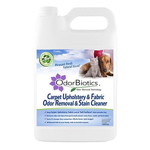 zero carpet cleaner - 8