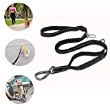 6FT Strong Nylon Dog Leash with Highly Reflective Threads and Bungee Buffer Leash