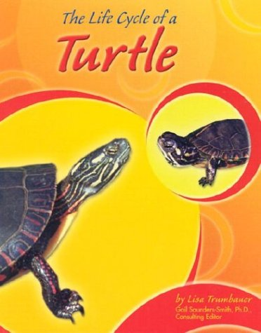The Life Cycle of a Turtle (Life Cycles) pdf