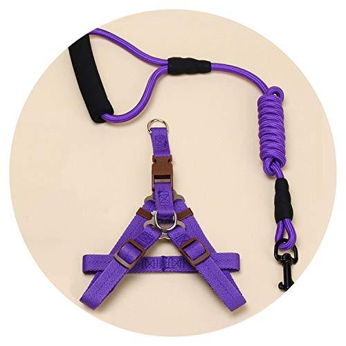 (shine-hearty for Dog Harness Leash Leads Dog-Collar Pet Accessories Puppy Vest Dog Harness Leash for,Purple,L)