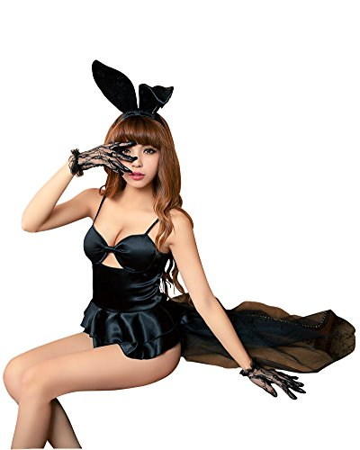 Lingeriecats Sexy Haughty Bunny Girl Outfit Cosplay Costume Set ()