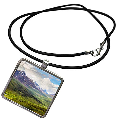 - 3dRose Danita Delimont - Canada - Canada, Yukon Territory. Tombstone Range and North Klondike River. - Necklace with Rectangle Pendant (ncl_313045_1)