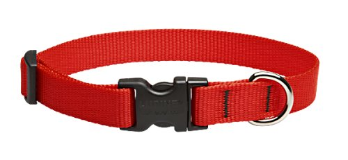 Dog Collar Collars Colors Solid - LupinePet Basics 3/4