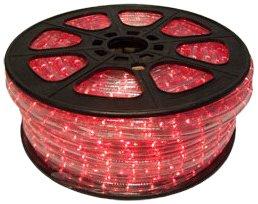 Led Christmas Lights Vs Traditional Lights in US - 6