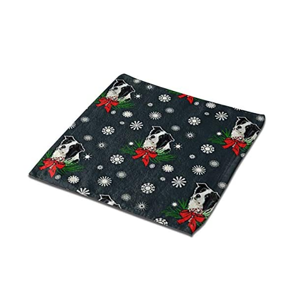 NFDF Border Collie Christmas Square Bath Towel, 13 Inch Washcloth Multipurpose Use for Sports, Travel, Bath, Beach, Kitchen 1