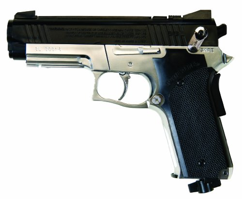 Daisy Outdoor Products Model 693 Pistol (Silver/Black, 7.9 Inch)