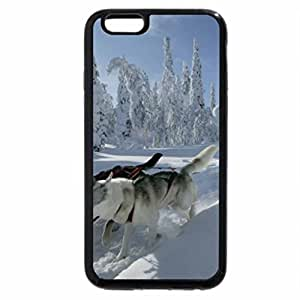 iPhone 6S / iPhone 6 Case (Black) Snow Dogs