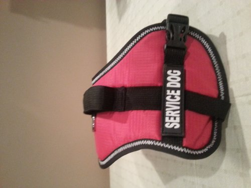Official Service Dog Vest Extra Small