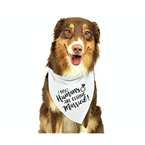 My Humans are Getting Married Dog Bandana, Wedding Dog Bandana, Dog Engagement Announcement, Wedding Photo Prop, Pet Scarf, Pet Accessories 30