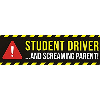 10x3 Car Magnet Artisan Owl Student Driver and Screaming Parent 1 Magnet New Driver Safety Funny Magnetic Auto Bumper