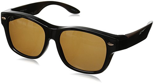 Solar Shield Hollywood Blvd Polarized Wayfarer Sunglasses, Brown, 54 - Hollywood Sunglasses