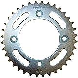 Sunstar 2-130838 Silver Steel 420-38T Rear Standard Sprocket, Model: 2-130838, Outdoor&Repair Store
