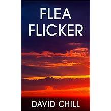 Flea Flicker (Burnside Series Book 9)
