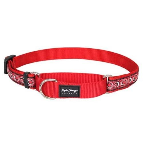 Red Dingo Cosmos Red Large Martingale Collar