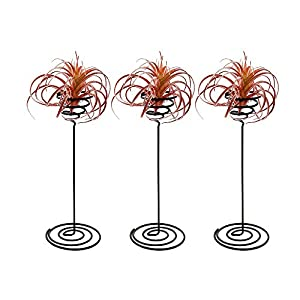 Danmu 3pcs a Set Iron Wire Air Plant Holder Tillandsia Holder (Plant is Not Included) 19