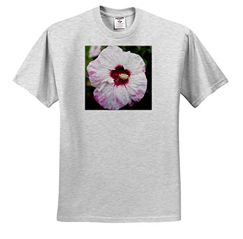 (3dRose Stamp City - Flowers - Photograph of Summerific Perfect Storm Dinner Plate Hibiscus Flowers. - T-Shirts - Youth Birch-Gray-T-Shirt XS(2-4) (ts_291286_27))