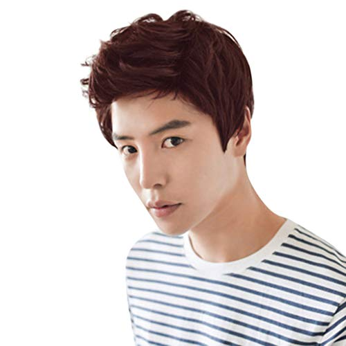 ack Short Wig For Men Fashion Synthetic Quiff Hair Wigs For Daily Use (12cm, Dark Brown) ()