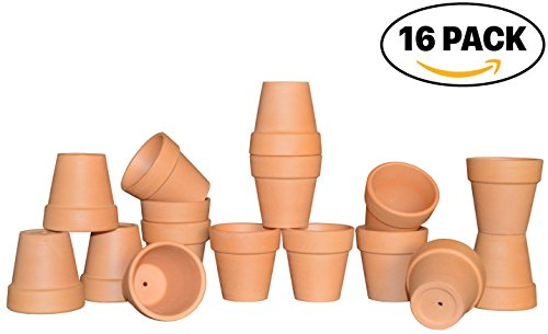 My Urban Crafts 2.5'' Small Mini Terra Cotta Pots - Lawn & Garden Mini Flower Clay Pots - Great For Succulent & Cactus Nursery Planter, DIY Craft Projects, Wedding and Party Favors (Set of 16) by My Urban Crafts