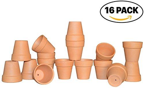 Mini Terra Cotta Pot (My Urban Crafts 2.5