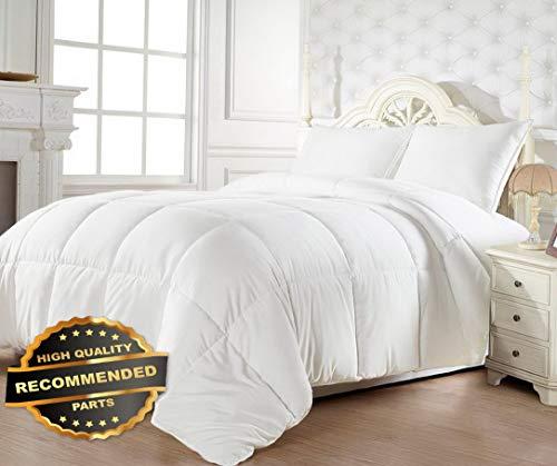 Werrox Goose Down Alternative Reversible Comforter - All Season Blanket - One Piece   Full/Queen Size   Quilt Style QLTR-291266040 ()