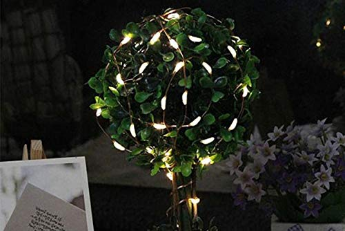 Nufelans 2M 20 LED Battery Operated String Lights Warm White Fairy Lamp Decorative for Wedding/Party/Home/Garden