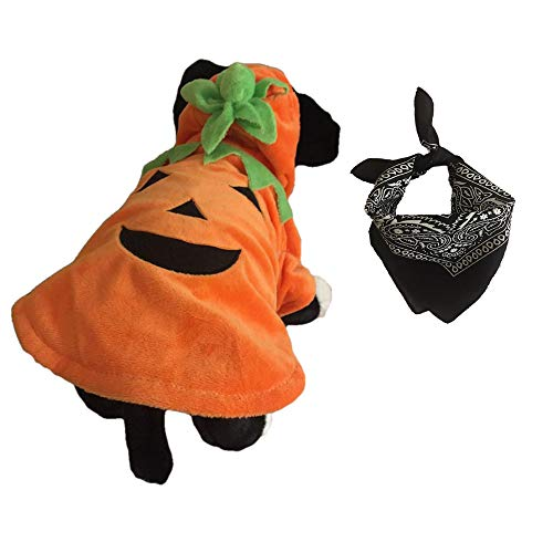 Eco Themed Halloween Costumes (Hopes Gifts Pumpkin Halloween Costume Outfit for Pet Dog Cat or Puppy with a Jack- O- Lantern Design Comes with a Thanksgiving Bandanna Scarf Neckerchief Bib (Black,)