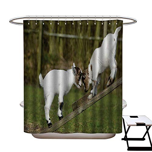 (BlountDecor Animal Shower Curtains Fabric Extra Long Two Cute Little Baby Goats on a Bench with Their Horns Picture Image Design Bathroom Set with Hooks W72 x L96 White and Green)