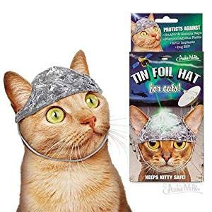 Cat And The Hat Hats (Archie McPhee Tin Foil Hats for Conspiracy)