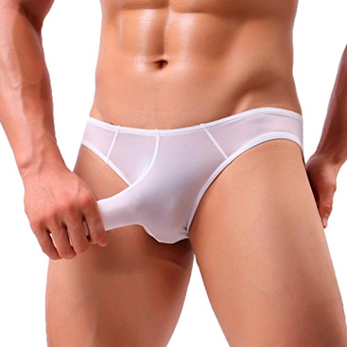 Mens Underwear ! Charberry Mens Translucent Low-Rise Men Big Thongs Sexy Mens Elephant Bulge Briefs Underwear Pouch T Lingerie Underpants Shorts (US-XL /CN-L2, (Tri Fold Tie Case)