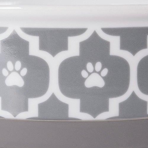 Buy dog dishes