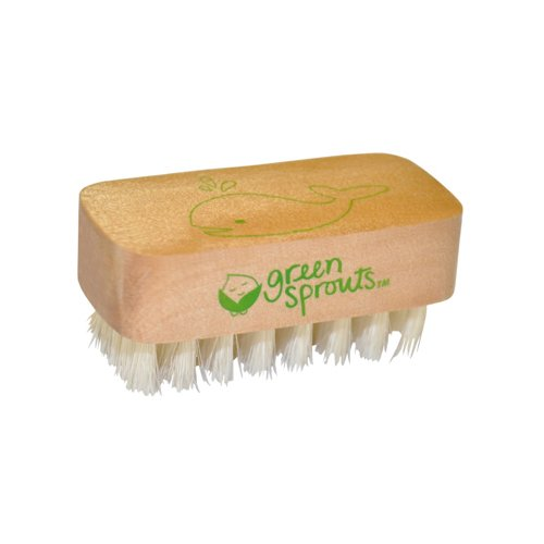 Green Sprouts Nail Brush (Best Green Sprouts Nail Brushes)