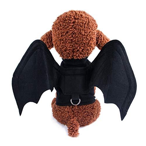 Halloween Pet Costume Bat Wings Spider Cosplay