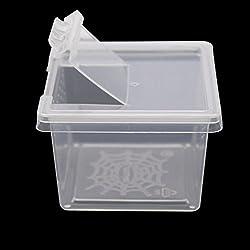 Plastic Transparent Reptiles Living Box Reptile Terrarium Ideal Habitat for Scorpion Spider Ants Chameleon Lizard