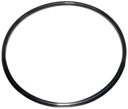 Jandy R0412700 O-Ring, 2''