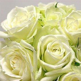 全6色から選べるバラの花束30本 バラギフト専門店マミーローズの豪華なバラの花束(生花) (白) バレンタイン B00SJ6R9TM 白 白