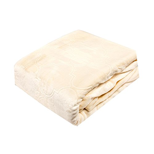 (Fraiche Maison Summer Ogee Hot Pressed Velvet Plush Faded Blanket, King, Pristine)
