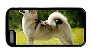 Funny best iphone covers Alaskan Malamute dog TPU Black for Apple iPhone 5C
