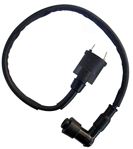 Brand New Ignition Coil For Honda CH80 CH 80 Elite Scooter 1985 1986 1987 1988 1989 1990 NEW ()