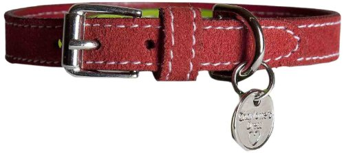 - Charlotte's Dress Collar, 1.48-Inch, Camel