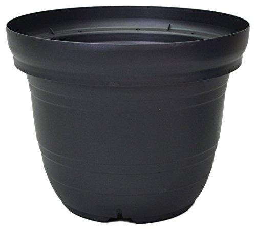 appuruuxea- Tree Pot 540Notebook Black