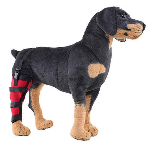 - Tutuba Dog Right Rear Leg Brace, Dog Compression Sleeve Wrap Puppy Injury Rear Leg Hock Brace Support Joints,Protect for Wound Healing, Prevent for Leg Warp (S, Right Leg-Red)
