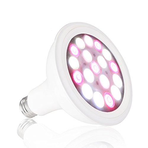 Led Light Bulbs For Growing Weed
