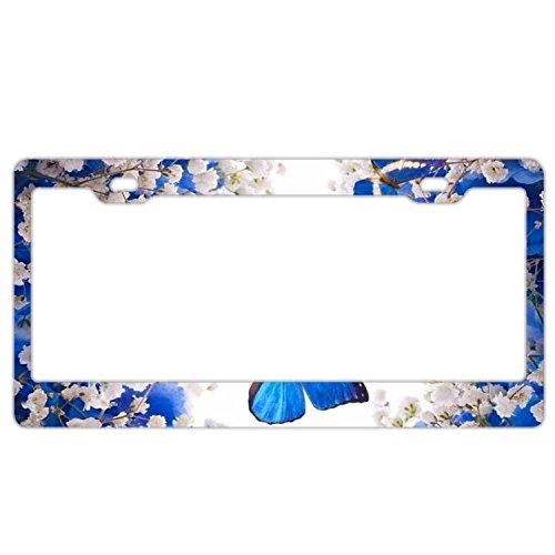 FunnyLpopoiamef Stainless Steel License Plate Frame White Flowers Blue Butterflies,Waterproof License Plate Covers Elegant Car Plate Frame Car Tag Frame