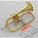 FidgetKute Professional new Flugelhorn ABALONE SHELL Keys Bb Flugel horn Monel Valves +Case